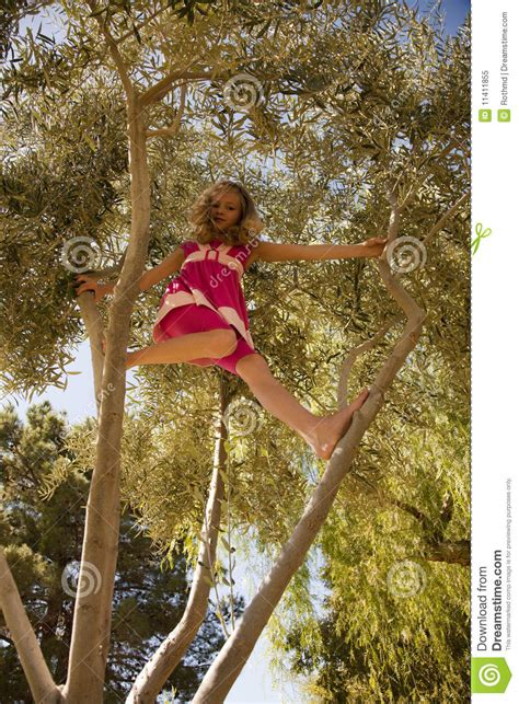 Blonde Girl Climbing High In A Tree Stock Image Image Of