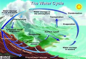 Global Water Cycle Diagram Figure Illustration