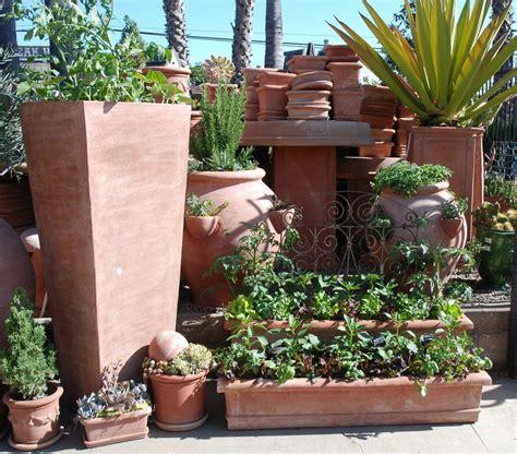 Edible Container Gardening 101  Eye Of The Day Garden
