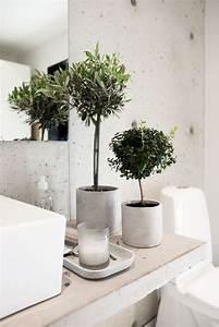 les 25 meilleures idees de la categorie plante salle de With carrelage adhesif salle de bain avec led pour plantes vertes