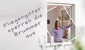 Hausmittel Gegen Fliegen : 9 hausmittel gegen fliegen in der wohnung as wohndesign ~ Articles-book.com Haus und Dekorationen