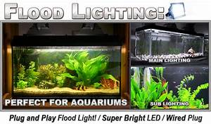 Aquarium reef led watt flood light k cool white