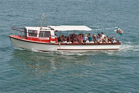 Boat Trip Newquay new quay boat trips and dolphin cardigan bay