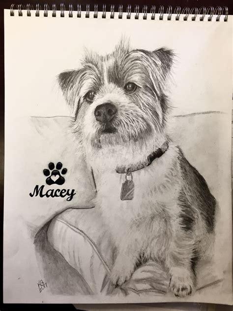 ideas  drawings  dogs  pinterest
