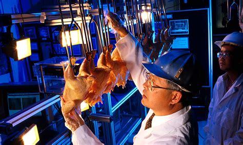 usda media  misinterpreting report  poultry