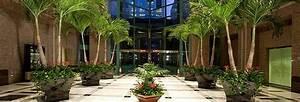 Foliage Design Systems: Interior Plant Maintenance