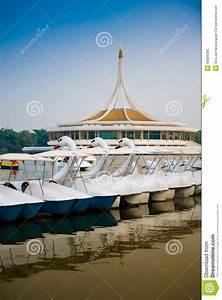 Destockage Petit Bateau En Ligne : la ligne du bateau de p dale de cygne en parc photo stock ~ Dailycaller-alerts.com Idées de Décoration
