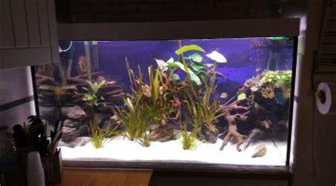 bricolage d un syst 232 me de remplissage de goutte 224 goutte pour un aquarium
