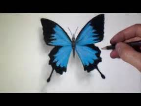 How to Draw Realistic 3D Butterfly Drawings