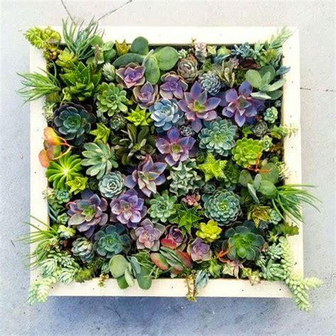 brilliant diy vertical indoor garden ideas