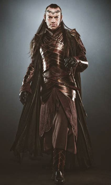 Learn Something New The Hobbit Lord Elrond Costume Summary