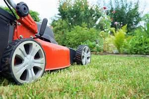 Tondre La Pelouse Sans Ramasser : tondre la pelouse ~ Melissatoandfro.com Idées de Décoration