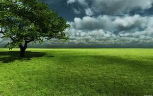 planície verde imagens de fundo