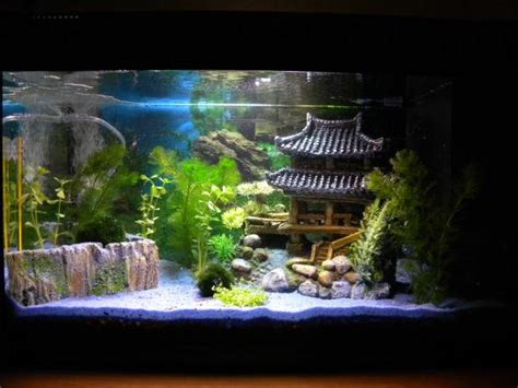d 233 coration aquarium bulleur