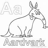 Aardvark Coloring Animal Anteater Coloringfolder sketch template