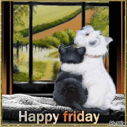 Friday Happy Animals Cats Hugging Animation Gifs