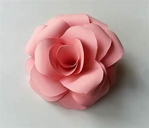 Diy, Paper, Rose, U00b7, How, To, Make, A, Flowers, U0026, Rosettes, U00b7, Papercraft, On, Cut, Out, Keep