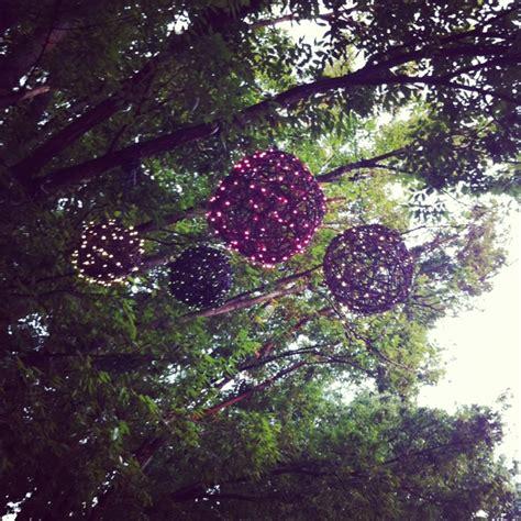 hanging tree lights diy inspiration pinterest