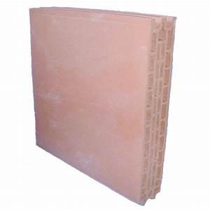 Placo Coupe Feu 1h : carreau de terre cuite pour cloisons coupe feu placfeu ~ Dailycaller-alerts.com Idées de Décoration