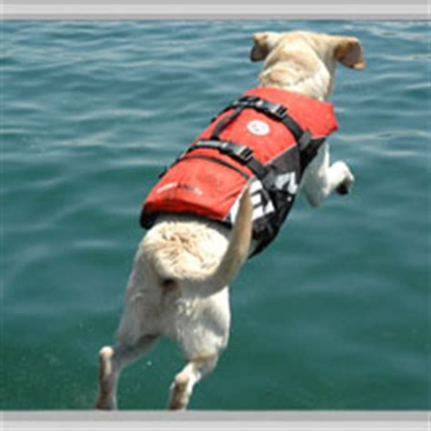 Custom Zwemvest by Dog Life Vests Ezydog Dog Life Jackets