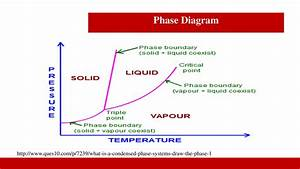 Phase Diagram Differential Equations  U2014 Untpikapps