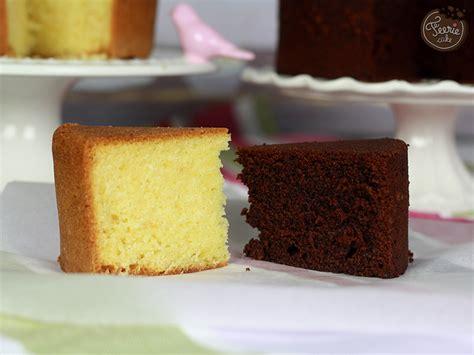 sponge cake vanille et chocolat f 233 erie cakef 233 erie cake