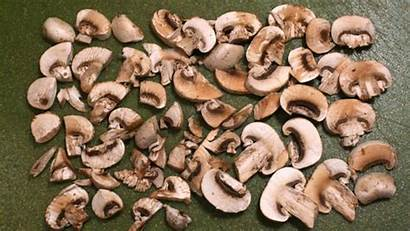 Gifs Christmas Mushroom Mushrooms Vitamin Foods Circle