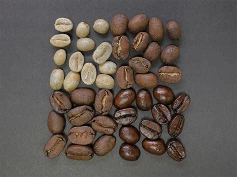 light roast more caffeine does light or roast coffee more caffeine