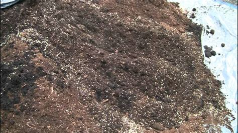 buy garden soil how to make square foot gardening soil mix in real time