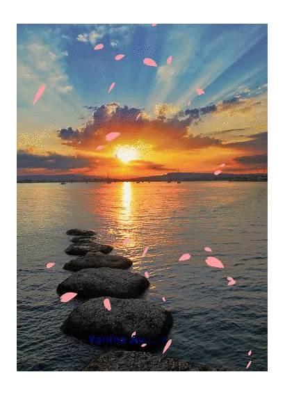 Amazing Sunsets Landscapes Sunset