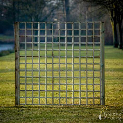 A Frame Garden Trellis by Garden Trellis Without Frame Breathe Azores