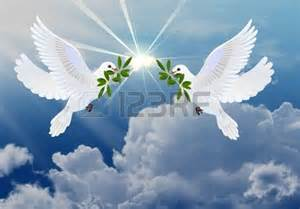 Peace and Dove with Olive Branch Symbol