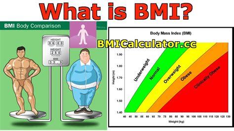 bmi body mass index introduction history  bmi