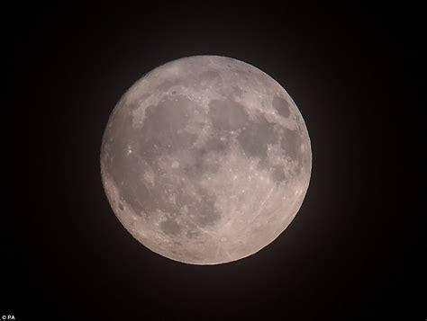 beaver moon  beam  larger   brighter tonight