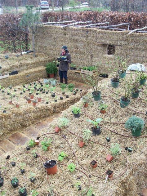 hay bale gardening sg517 straw bale gardening part 3 wrap up
