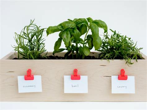kitchen planter box  herbs diy