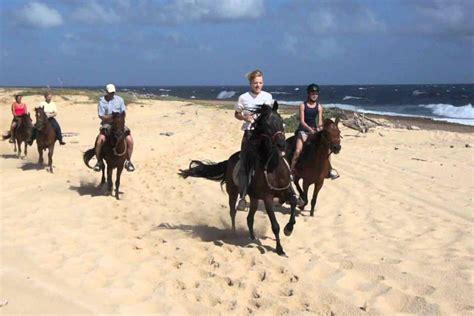 riding horseback tour aruba tours rancho notorious cunucu