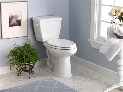 Cheap Vs Steep Toilets Hgtv