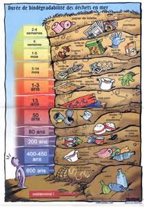 Durée De Vie Des Papiers by Apequa Association Pour La Pr 233 Servation De La Qualit 233 De