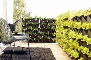 Vertikaler Garten Balkon : gem se anbauen auf dem balkon welche sorten eignen sich am besten daf r garten garten ~ Frokenaadalensverden.com Haus und Dekorationen