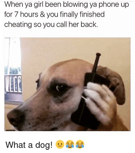 Dog On Phone Meme - when ya girl been blowing ya phone up for 7 hours you finally finished cheating so you call