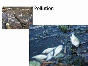 Short summary of water pollution
