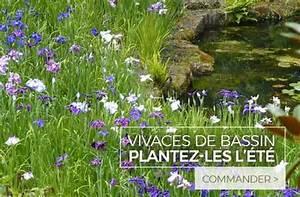 Plantes Vivaces Autour D Un Bassin : plantes vivaces pour le jardin vivaces couvre sol vivaces d 39 ombre et de soleil ~ Melissatoandfro.com Idées de Décoration
