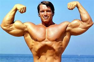 DIY frame Arnold Schwarzenegger Terminator Great Muscle ...
