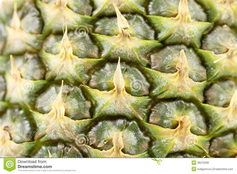 Pineapple Fruit Close Up Texture Stock Photo Image