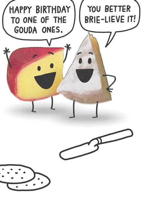 Gouda And Brie Cheese Funny  Ee  Birthday Ee   Card Greeting Cards