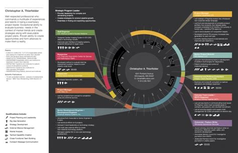 10+ Inspiring Infographic Resumes And Cv's