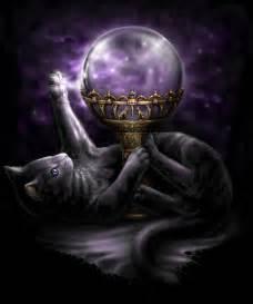magic cat black cat magic by sheblackdragon on deviantart
