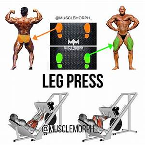 Leg Press Position Leg Press Machine Leg Press Leg Day
