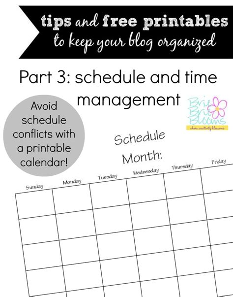 blog organization tips   printables